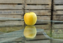 Pomme de Saint-Martin-d'Auxigny