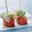 Sucettes de saumon frais Label Rouge au gingembre mariné et concombre