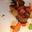 Ris de veau en parfum de sous bois et pomme Ariane