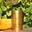 Bloc de foie gras de canard 190g -Ferme le Bayle