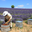 Le rucher des prés