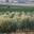 Domaine de l'Oulibaou