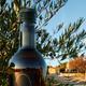 Huile d'olive domaine de l'olibaou