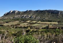 Domaine du Vallon des Glauges
