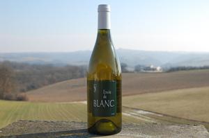 VDP des Côtes Catalanes Envie de Blanc 2010