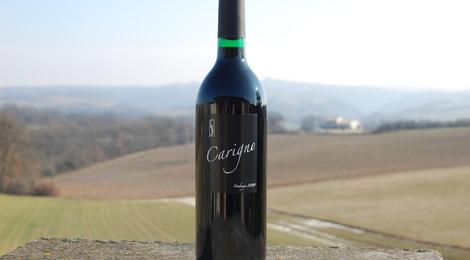 AOC Côtes du Roussillon Carigno 2010