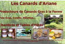 Les Canards d'Ariane