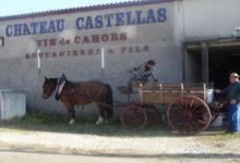 Malbec vin de Cahors AOC