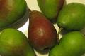 Christel Laurent, pommes et poires