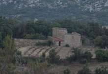 Domaine Thunevin-Calvet