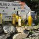 huile d'olive vierge, première pression à froid