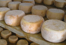 Fromagerie MAriani