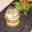 Millefeuille de pommes et chèvre chaud au Miel Du Gâtinais
