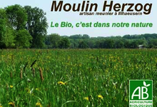 Moulin Herzog