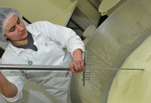 Bergerie Fromagerie Des Abers