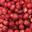 Catherine Daniou, fraises