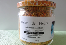 pollen de fleur
