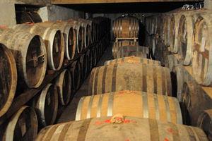 Vinification et Distillation