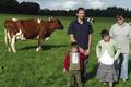 EARL de la Colline, viande bovine