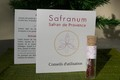 Tube de Safran de Provence Safranum