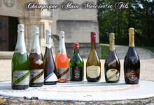 Champagne Alain Mercier
