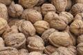 Noix fraiches ou sèches selon la saison