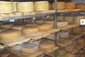 EARL Er Spernen, la fromagerie d'Eugénie