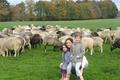 EARL Les Bergers Associés, agneaux