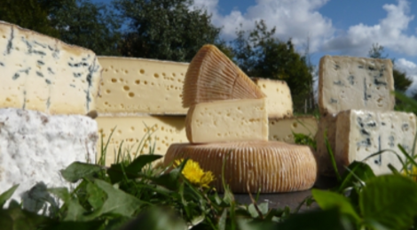 Fromage Le Darley