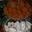 truffes, muscadines