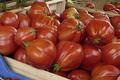 tomates bio coeur de boeuf