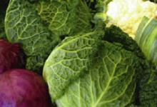 Pascal Le Paboul, légumes de saison