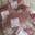 colis de 10 kilos standard, viande de veau