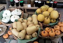 La ferme de Kerharou