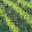 Domaine les bruyères