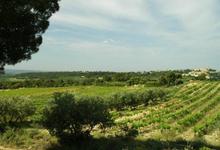 domaine du grand Jacquet