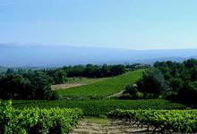 Domaine Le Grand Vallat