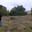MICOULEAU JEAN-LOUIS, truffes