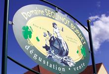 Domaine Seguinot-Bordet