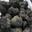 Truffes de la Montagne Noire.