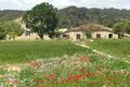 Domaine de Tarailhan, Le Potager de la Clape