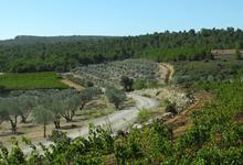 Domaine des Bugadelles