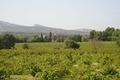 Domaine de la Fount