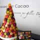 Macaron et Cacao, Gilles Bajolle