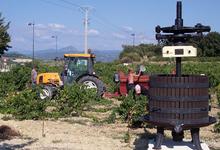 Domaine Beau Mistral