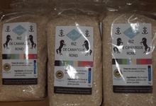 Riz de Camargue rond