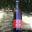 Bière au riz rouge de Camargue