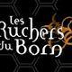 Les Ruchers Du Born