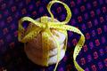 cookies aux zestes et jus de citron