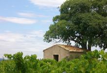 Domaine le Grangeot